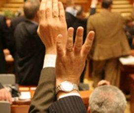 S-a votat strategia pentru incluziune 2015-2020