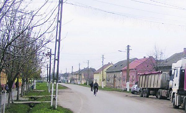Romii din Saravale, Timis, s-au deprins cu munca si isi trimit copiii la scoala
