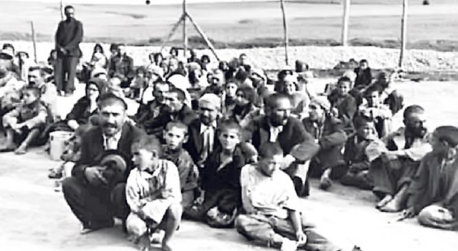 Cel mai mare specialist român în istoria ţiganilor: «11.000 de ţigani au murit în Transnistria»