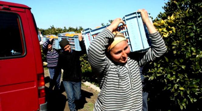 Un centru de asistenţă pentru românii din străinătate va fi deschis în Sicilia. Iată ce servicii va oferi